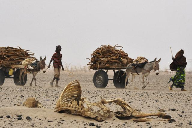 47 országban fenyeget élelmiszerhiány