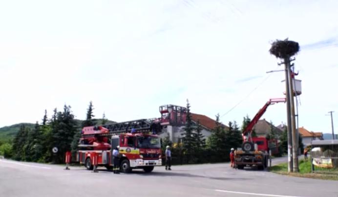 Bajba jutott gólyafiókákat mentettek a tűzoltók