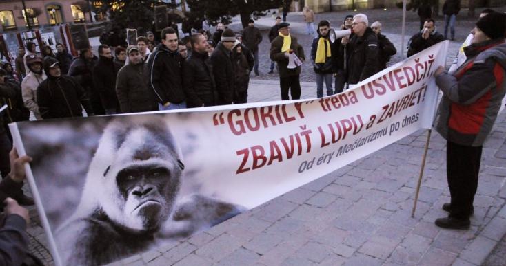 Gorilla-ügy: Néhány tucatnyian tüntettek Haščák háza előtt