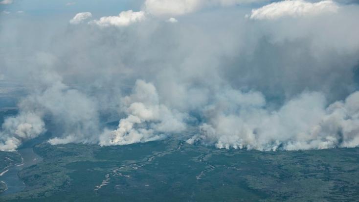 Pusztít az erdőtűz a horvát tengerparton