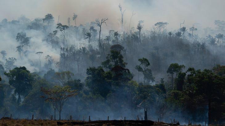 Megháromszorozódtak az erdőtüzek a világ legnagyobb trópusi mocsárvilágában