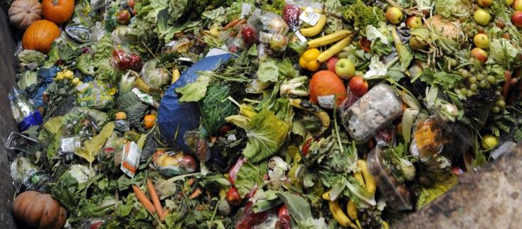 Elképesztő, micsoda pazarlás folyik a világon! Évente 2,5 milliárd tonna élelmiszer a szemétbe kerül