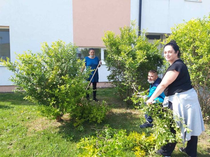 Fát ültettek az önkéntesek