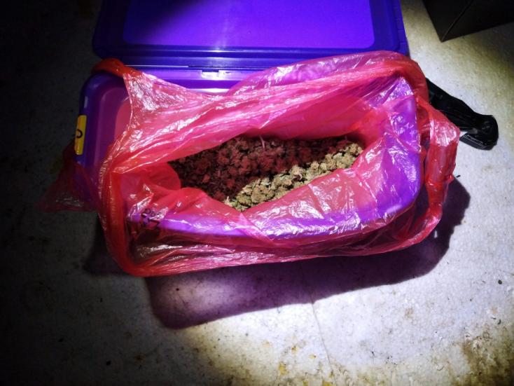 Fél kiló füvet találtak a díler lakásán