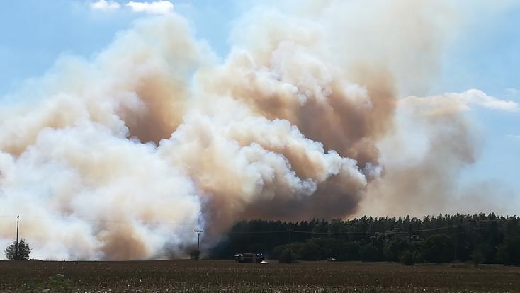 Lángolt a kukoricatarló Albárnál (FOTÓK)