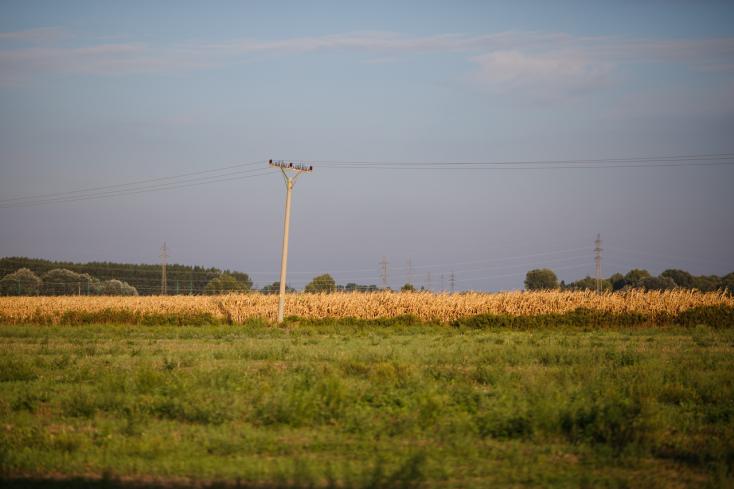 Fel kell készülniük a mezőgazdászoknaka klímaváltozásra