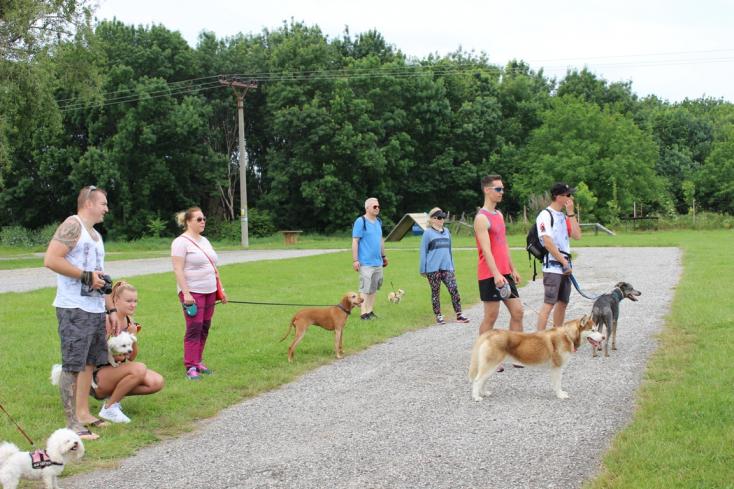 Nemes cél érdekében futottak együtt kutyusok és gazdik (VIDEÓ)