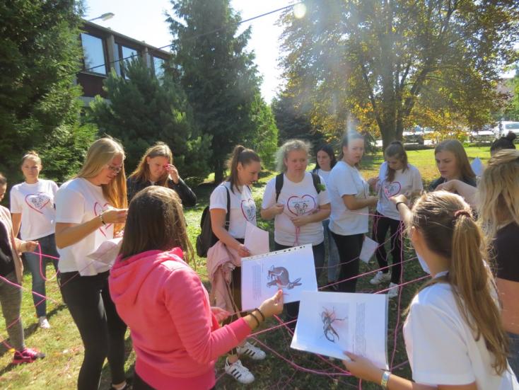 Mozgással az egészségért – élet- és egészségvédelmi nap a nagymegyeri iskolában