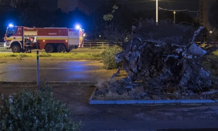 Kidőlt fákhoz, leszakadt villanyvezetékekhez riasztották a tűzoltókat