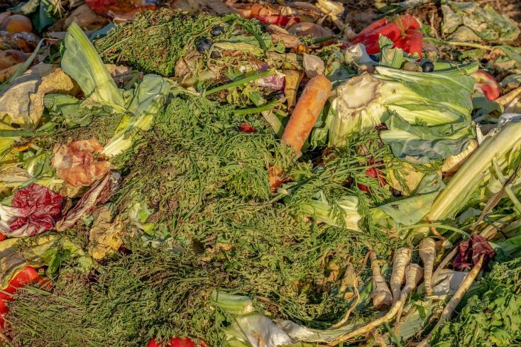 Somorja komposztálókat vásárol a zöldhulladékra
