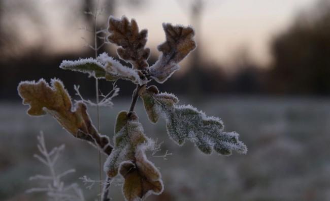 Dermesztően hideg éjszaka lehet az ország egyes járásaiban