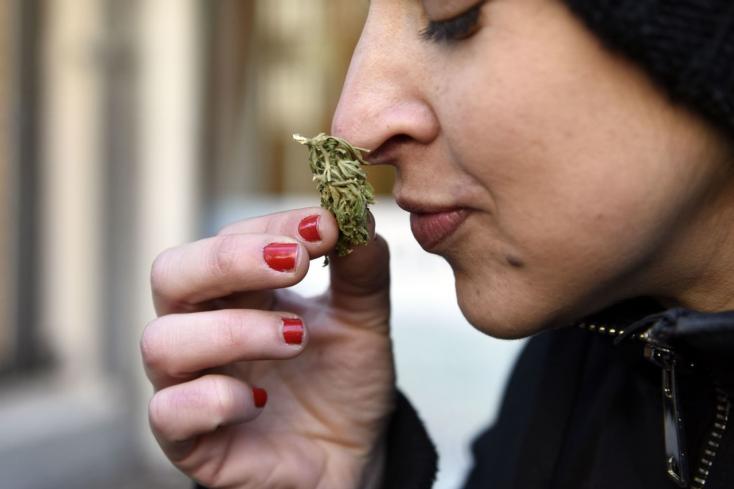 Már a 16. amerikai államban legalizálták a marihuánát, Virginia az első déli
