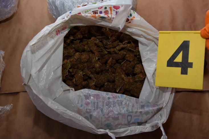 18 kiló fűvel kaptak el olasz és magyar drogdílereket!