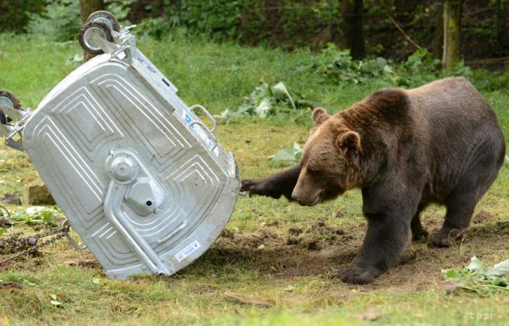 LÉNYEG: A vakcinafóbiás csődületek meg a migráns medvék veszélyei