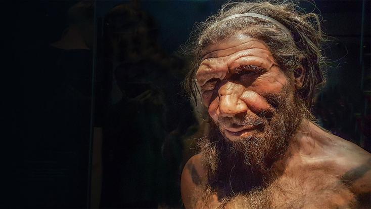 Kiderült, miokozhatta a neandervölgyi ember kihalását