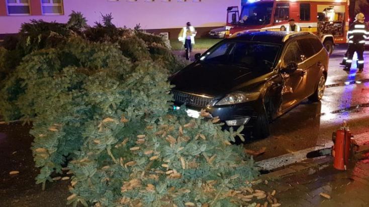 Fákat csavart ki, balesetet is okozott az éjszakai viharos szél