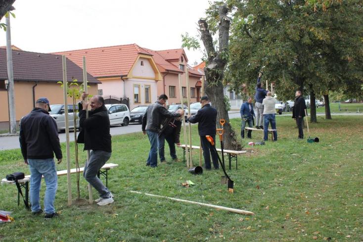 Kétszáz fát ültettek önkéntesek Pozsonypüspökiben