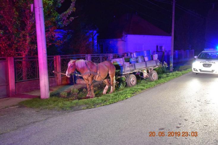 Ittas hajtót büntettek a rendőrök Hetényen – társa ült a helyére a lovaskocsin, az igazi kaland csak ekkor kezdődött!