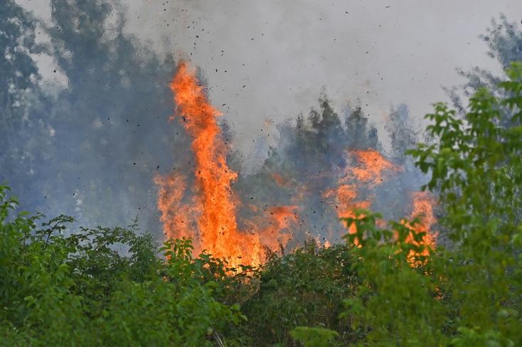40 tűzoltó küzd a lángokkal Pozsonyban