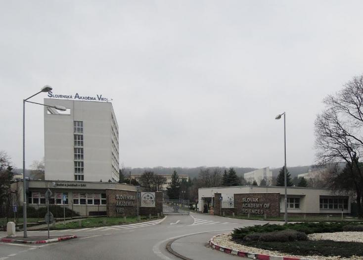 Tüdőférget találtak egy dél-szlovákiai páciensnél