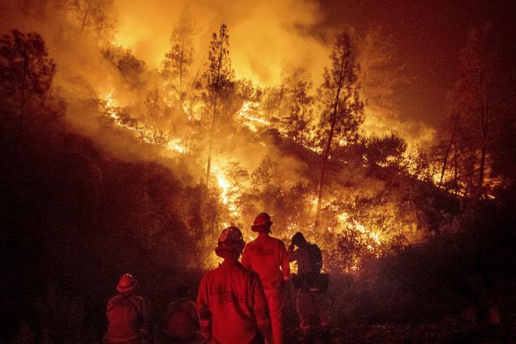 A hosszú szárazság a bozóttüzek fő oka