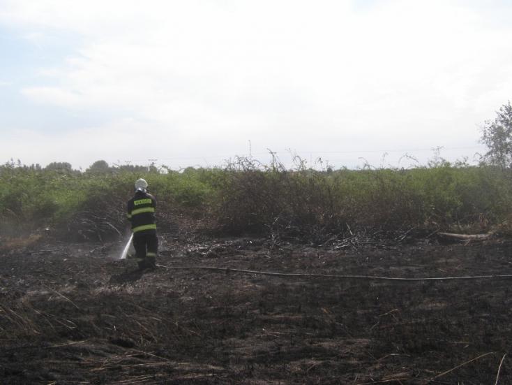 TŰZ: Lángokban állt az illegális szemétlerakat!