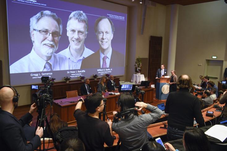 Nobel-díj - Sejtkutatásért hárman kapják az orvosi Nobel-díjat