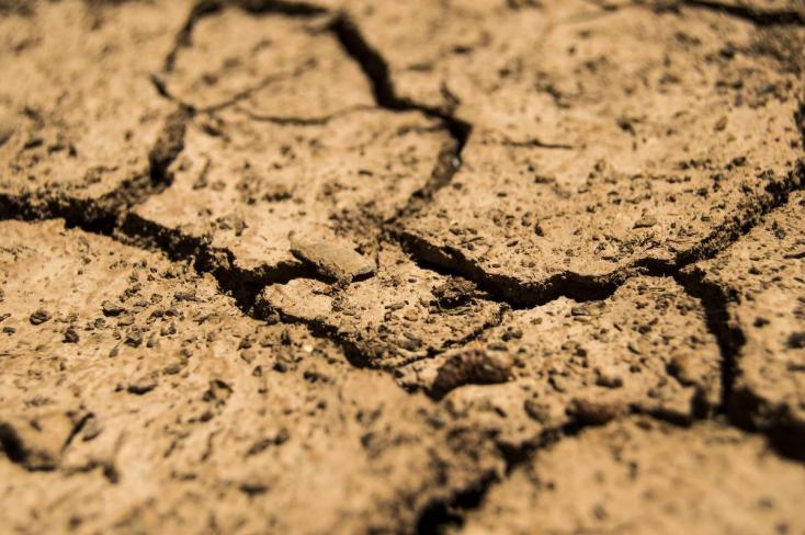 Azon spekulálnak, hogyan mérsékeljék a szárazság okozta hatalmas károkat Szlovákiában