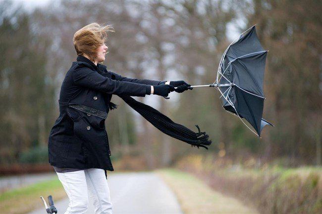 Viharos szél lesz egész nap a Csallóközben is