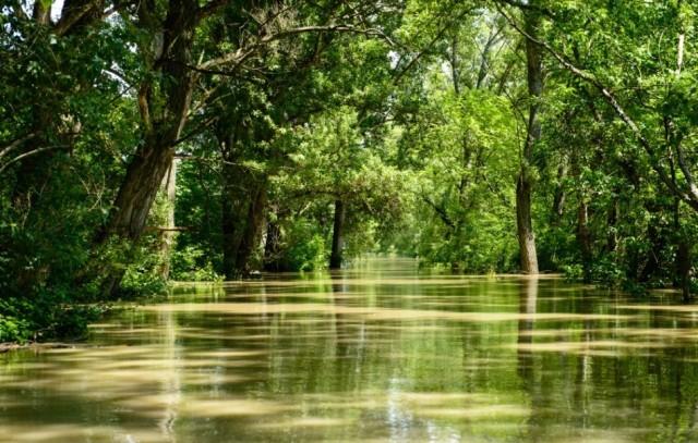 Csallóköz egyelőre nem lesz védett vízgazdálkodási terület