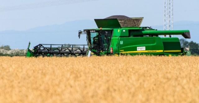 Az aszály miatt előbb kezdődött az aratás, a munkát az eső lassítja