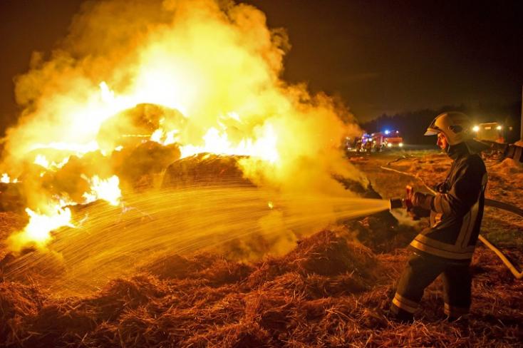Kirúgták a diákokat, bosszúból felgyújtották az iskolát