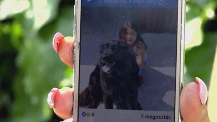 A rendőrség kihágásként kezeli a kutyáját autójával vontató nyugdíjas esetét – a férfit feljelentették az állatvédők