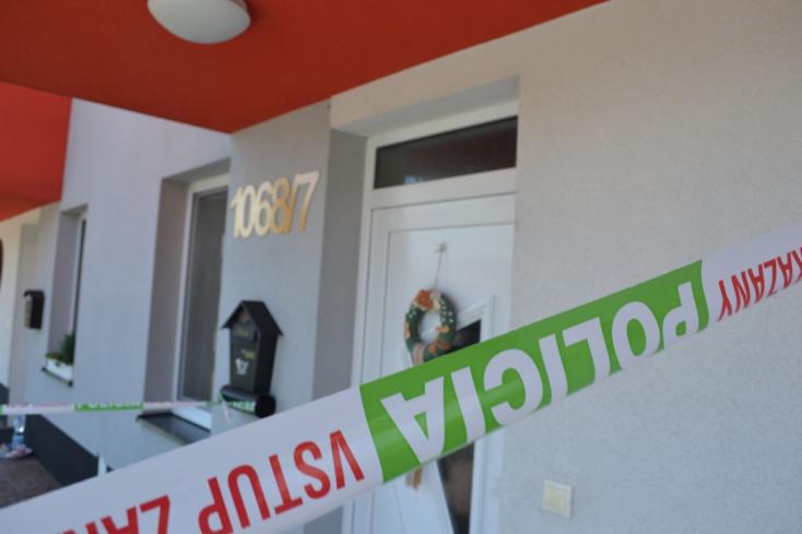 Vizsgálati fogságba helyezték a vásárúti nő gyilkosát